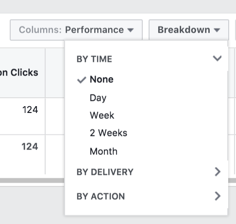 Facebook Audience Insights by Time