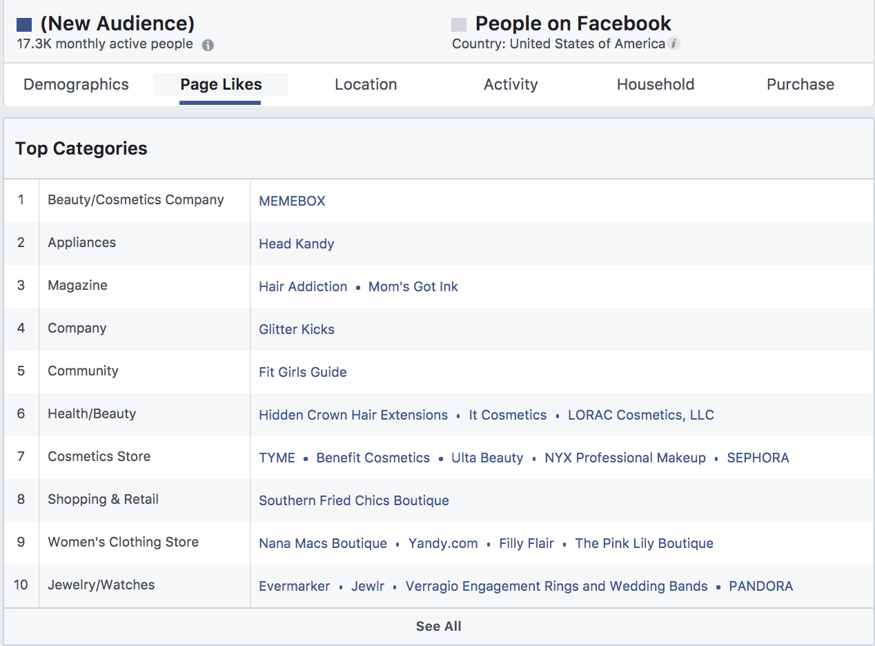 Facebook Audience Categories for Insights